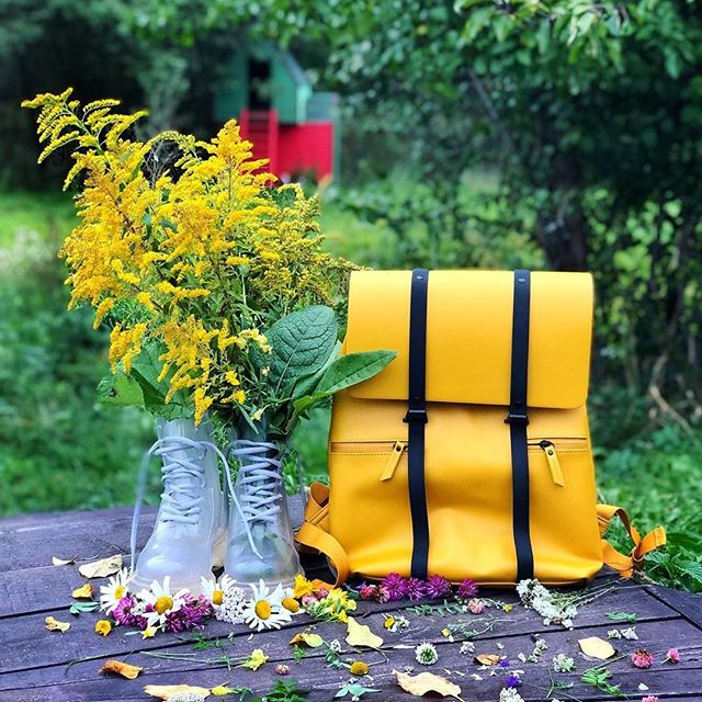 """""""Minds are like flowers; they open only when the time is right."""" – Stephen Richards (Photo via @estelle_sunny)  #SpläshMustard #walkswithGL #anywherewithGL #gastonluga"""